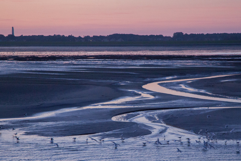 Schiermonnikoog, sunset on the Wad